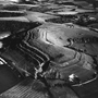 Hambleton Hill Fort Dorset. copyright photographer Marilyn Bridges