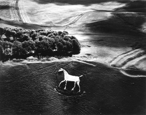 Cherhill Horse, Wiltshire, England, 1985. Europe North. copyright photographer Marilyn Bridges